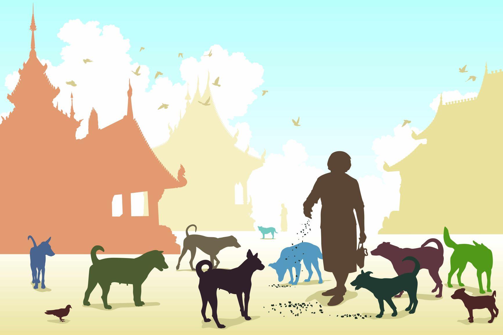 ¿Es siempre el vínculo con nuestros perros y gatos beneficioso?