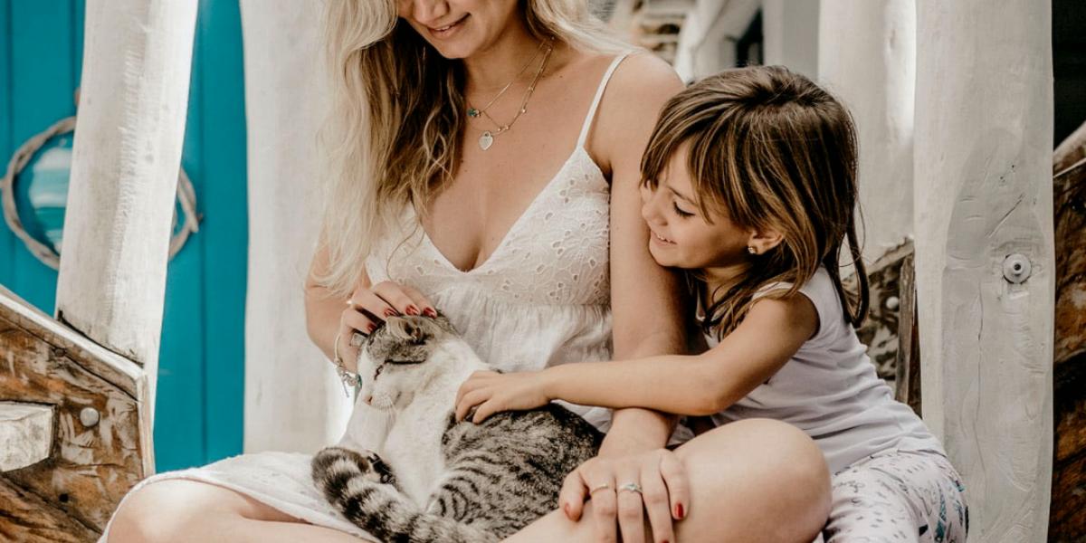 El gato que entra en una familia humana
