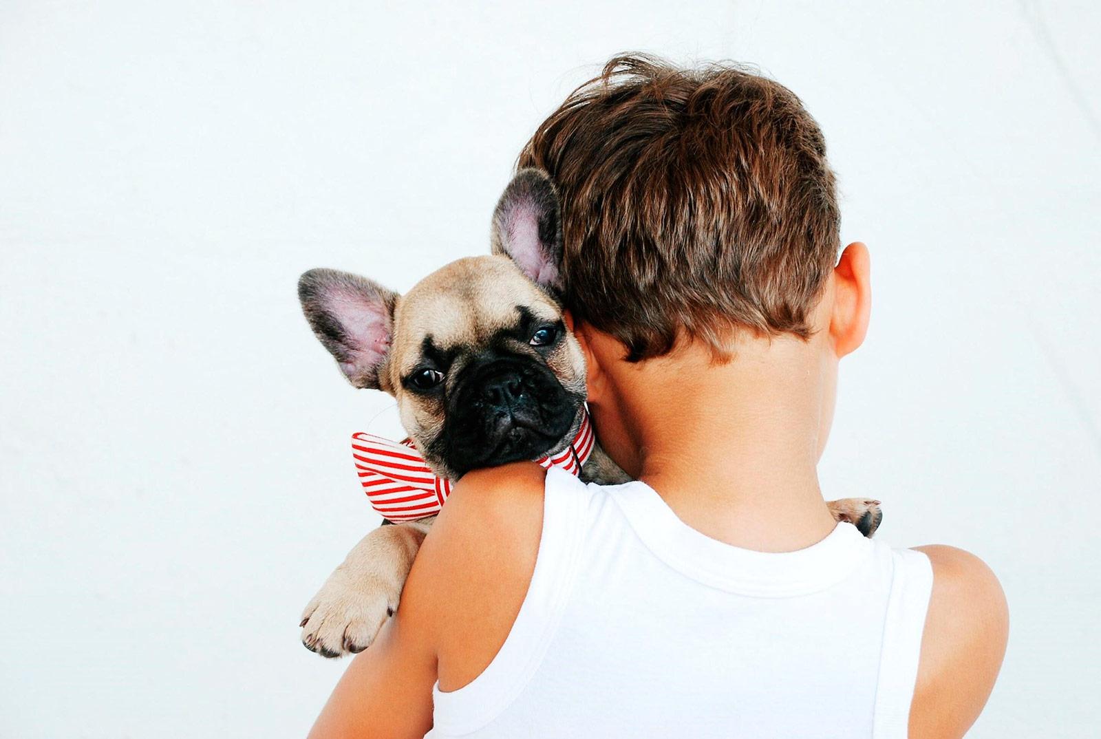 El beneficio recíproco de las intervenciones asistidas con animales