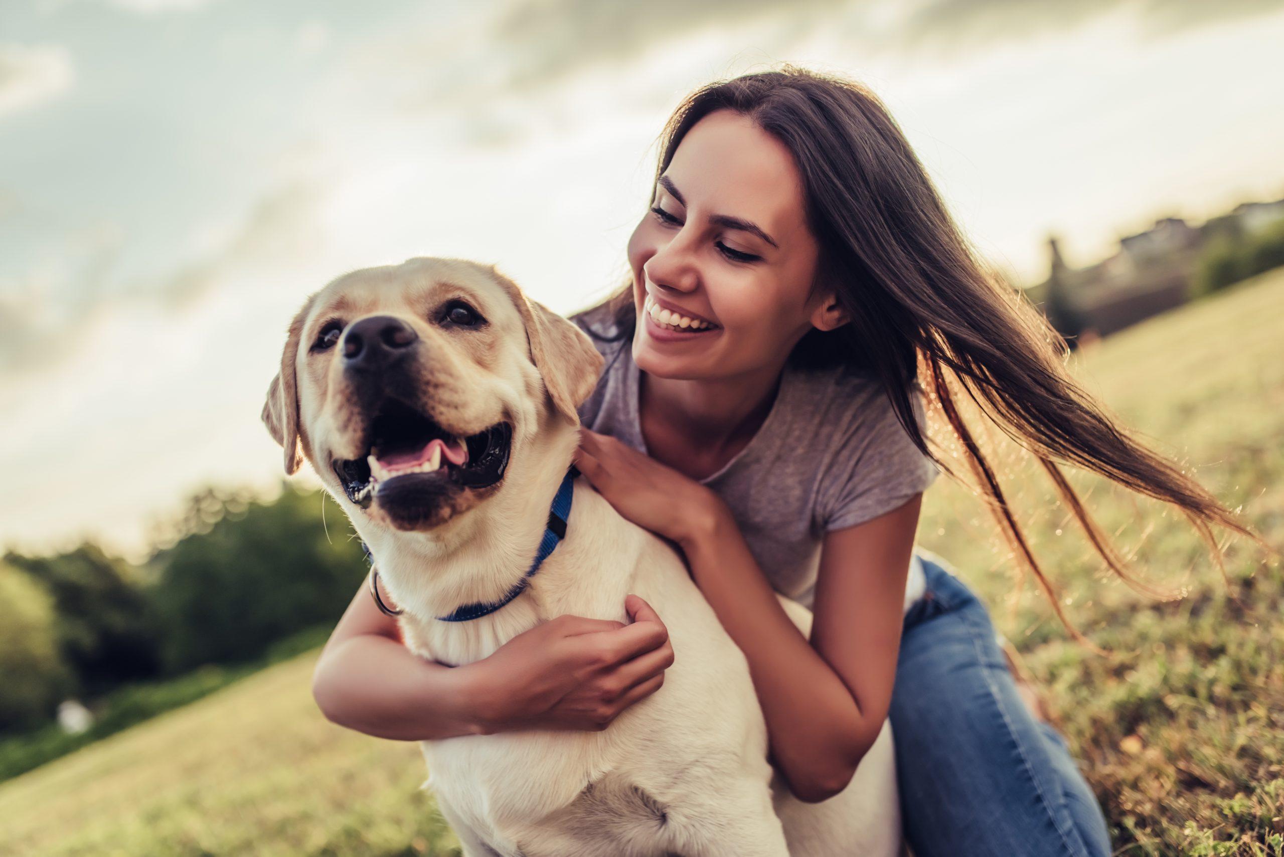 Los perros nos entienden… más que nosotros mismos