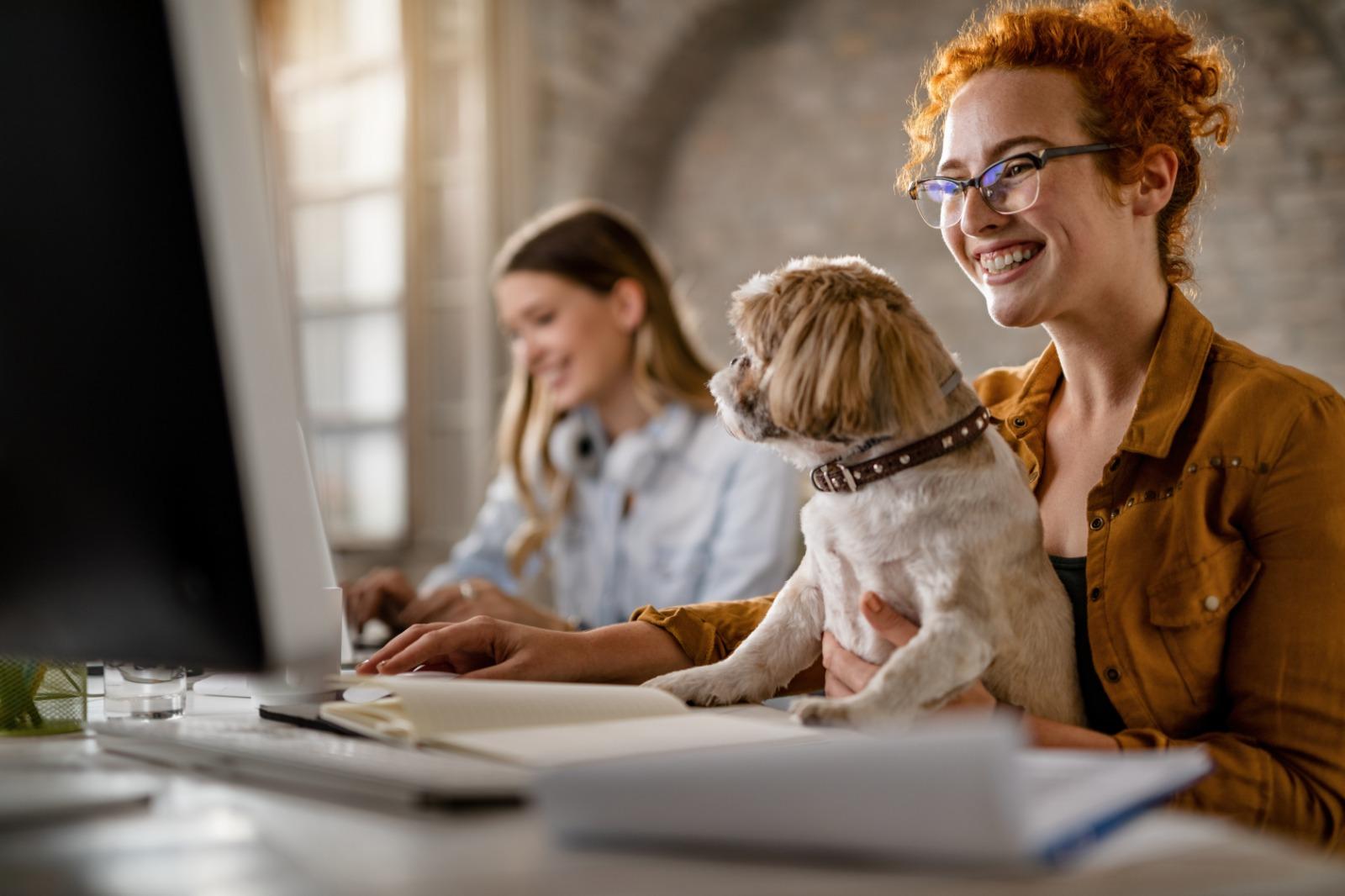 Perros en la oficina ¿Una estrategia anti burn out?