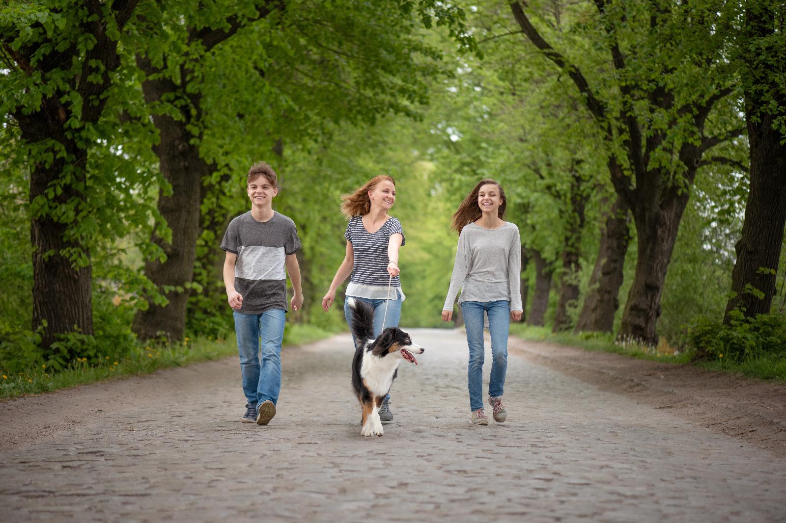La adolescencia de los perros, un momento desafiante